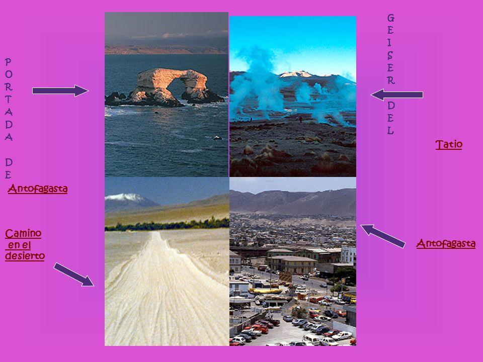 P O R T A D A D E Antofagasta Camino en el desierto G E I S E R D E L Tatio Antofagasta