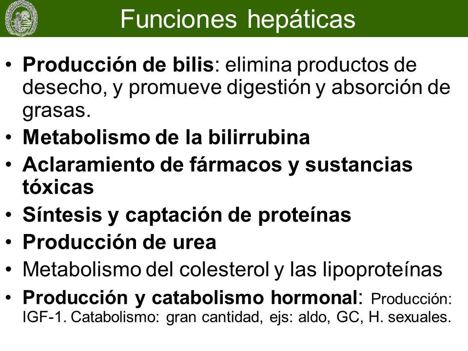 Producción de bilis: elimina productos de desecho, y promueve digestión y absorción de grasas. Metabolismo de la bilirrubina Aclaramiento de fármacos