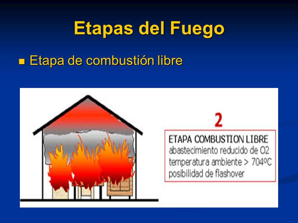 Etapas del Fuego Etapa Inicial o incipiente. Etapa Inicial o incipiente.