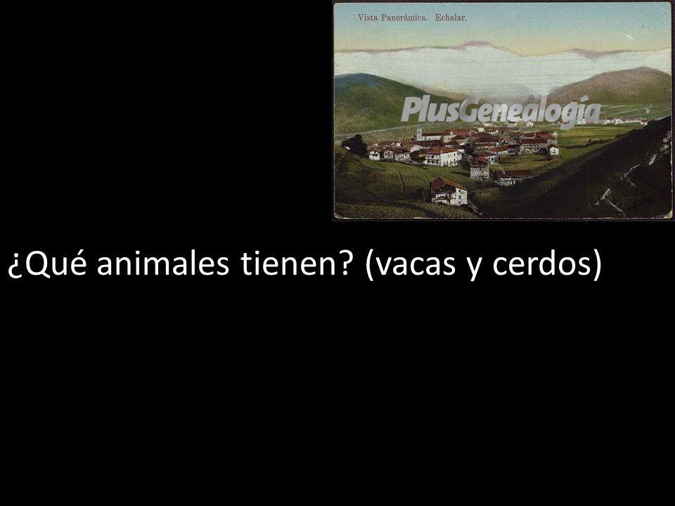 ¿Qué animales tienen? (vacas y cerdos)