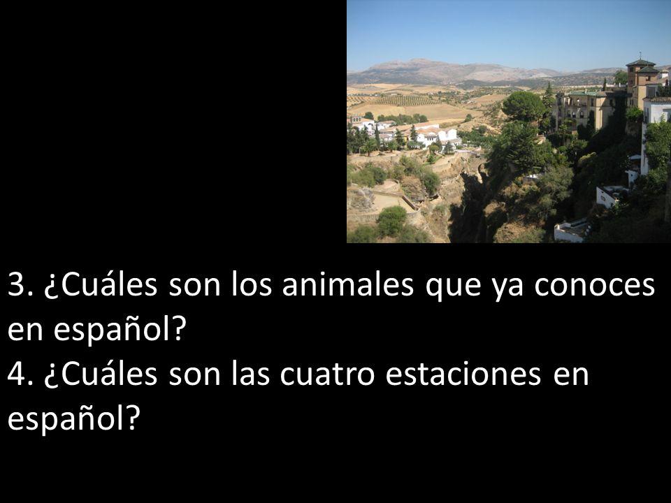 3. ¿Cuáles son los animales que ya conoces en español? 4. ¿Cuáles son las cuatro estaciones en español?