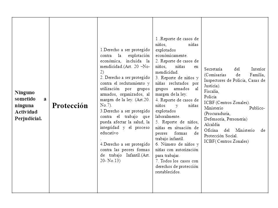 Ninguno sometido a ninguna Actividad Perjudicial. Protección 1.Derecho a ser protegido contra la explotación económica, incluida la mendicidad.(Art. 2