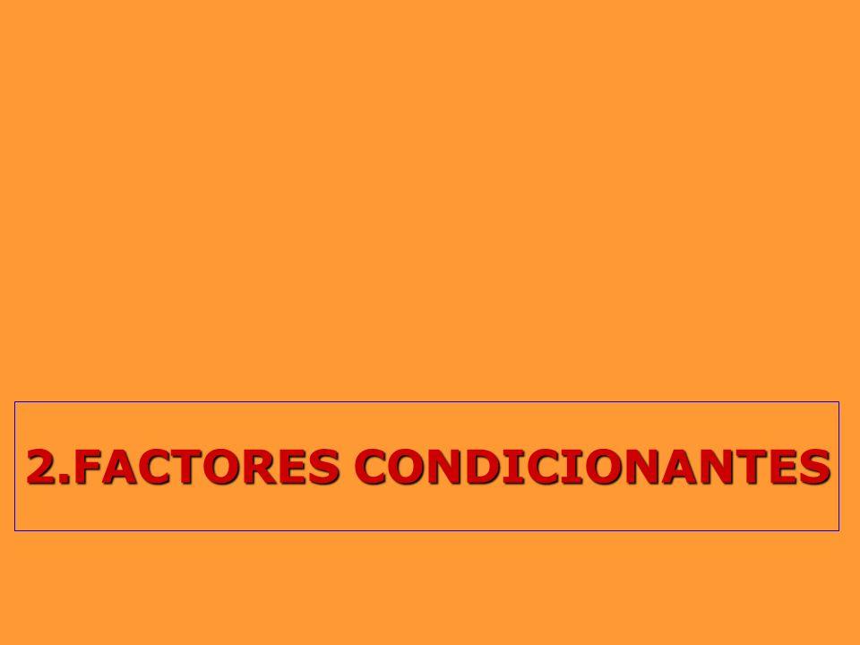 2.FACTORES CONDICIONANTES