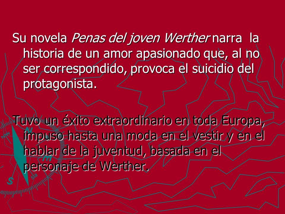 Su novela Penas del joven Werther narra la historia de un amor apasionado que, al no ser correspondido, provoca el suicidio del protagonista. Tuvo un