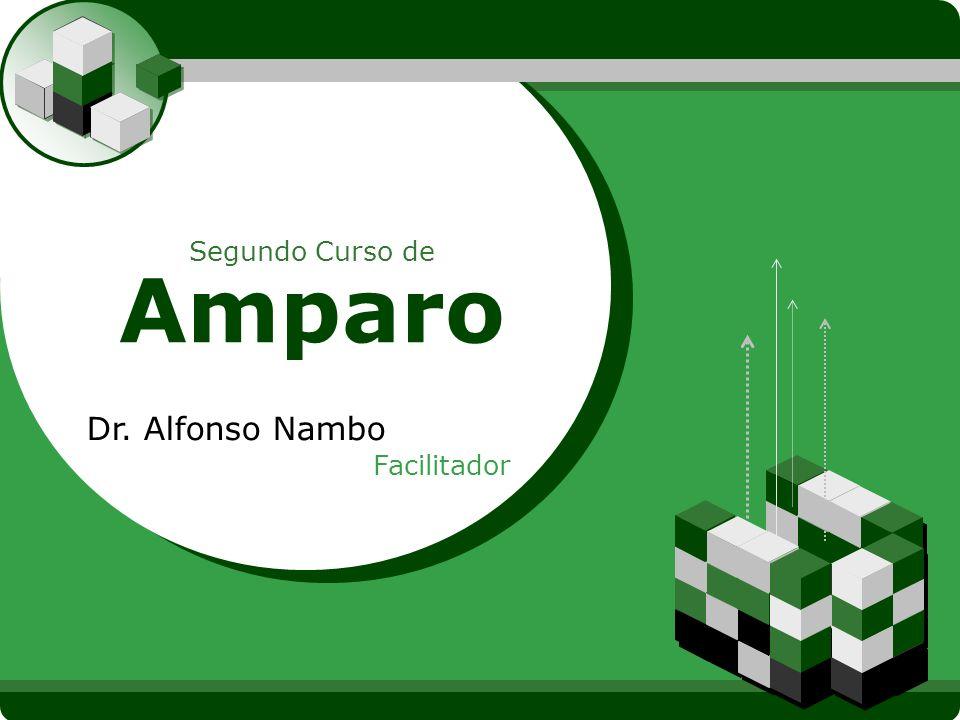 LOGO Segundo Curso de Amparo Dr. Alfonso Nambo Facilitador