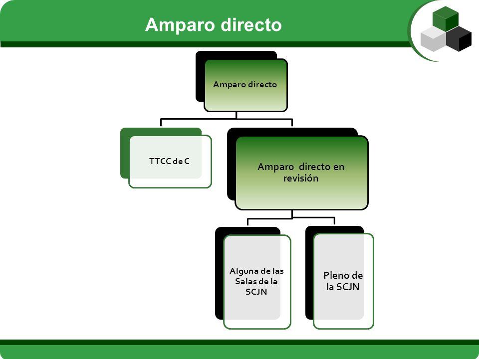 Amparo directoTTCC de C Amparo directo en revisión Alguna de las Salas de la SCJN Pleno de la SCJN Amparo directo