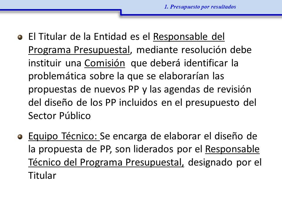 El Titular de la Entidad es el Responsable del Programa Presupuestal, mediante resolución debe instituir una Comisión que deberá identificar la proble
