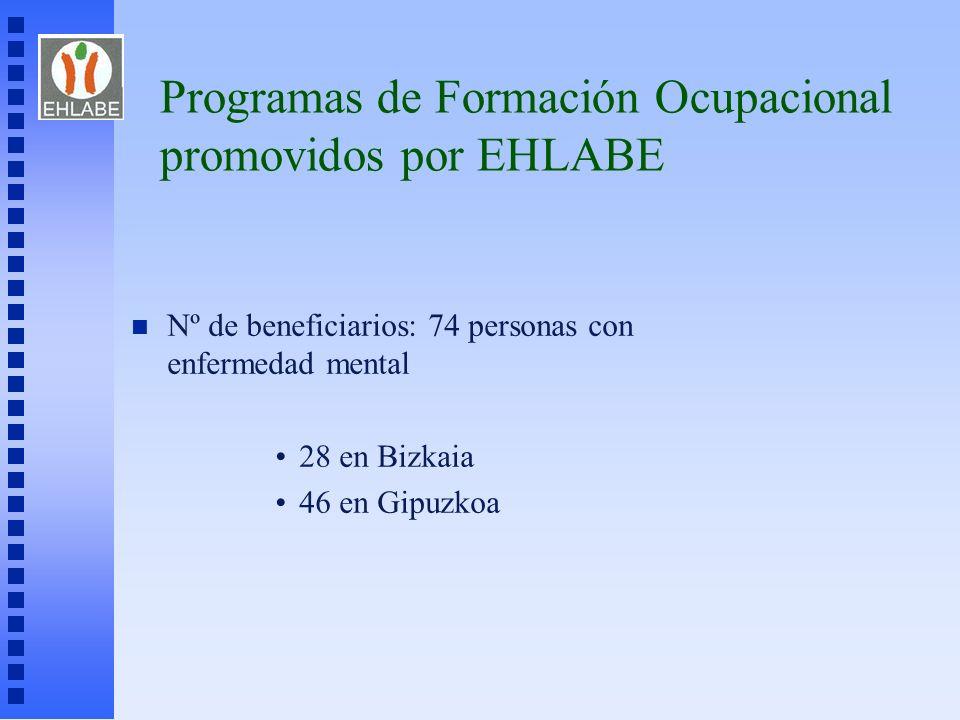 Programas de Formación Ocupacional promovidos por EHLABE n Nº de beneficiarios: 74 personas con enfermedad mental 28 en Bizkaia 46 en Gipuzkoa