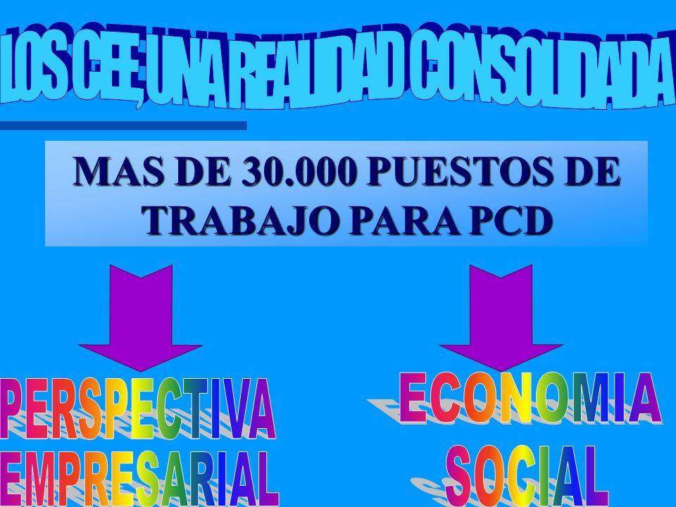 MAS DE 30.000 PUESTOS DE TRABAJO PARA PCD