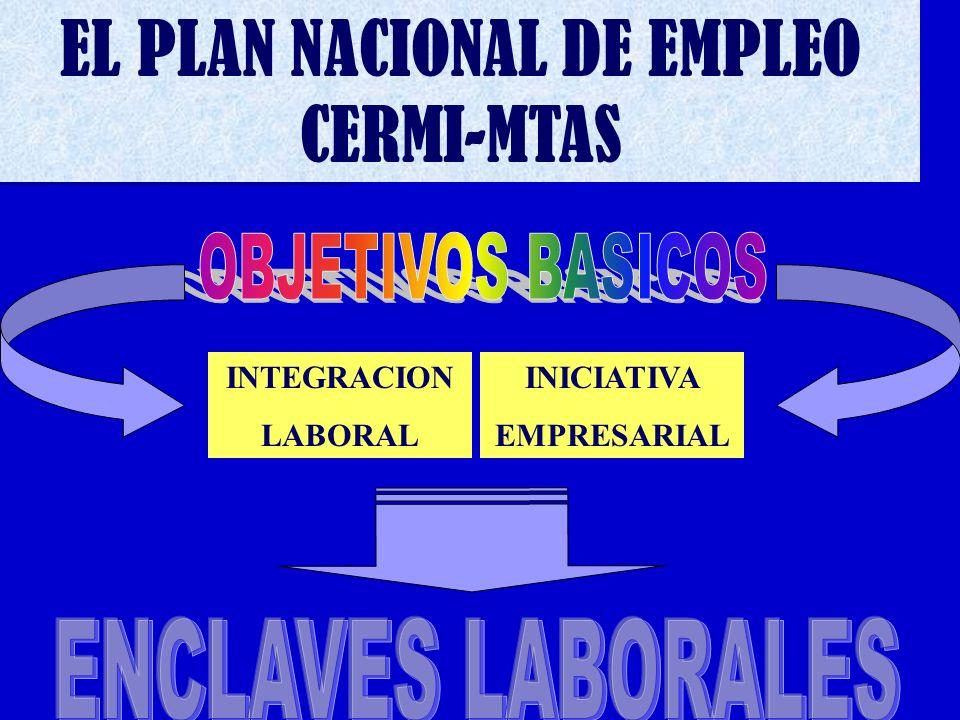 EL PLAN NACIONAL DE EMPLEO CERMI-MTAS INTEGRACION LABORAL INICIATIVA EMPRESARIAL