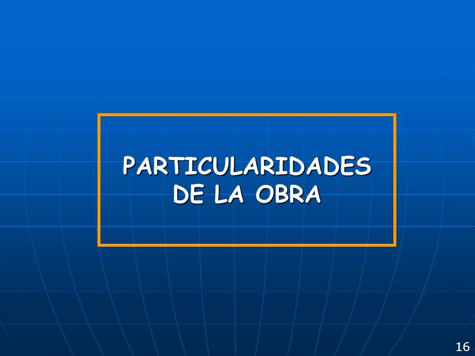 PARTICULARIDADES DE LA OBRA 16