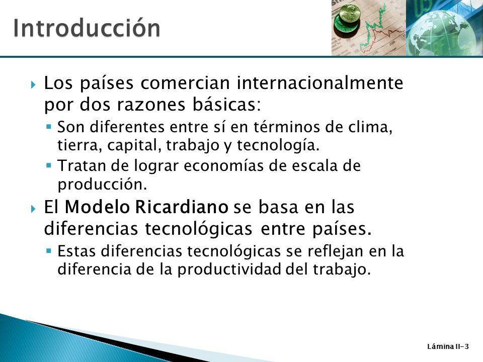 Lámina II-3 Los países comercian internacionalmente por dos razones básicas: Son diferentes entre sí en términos de clima, tierra, capital, trabajo y