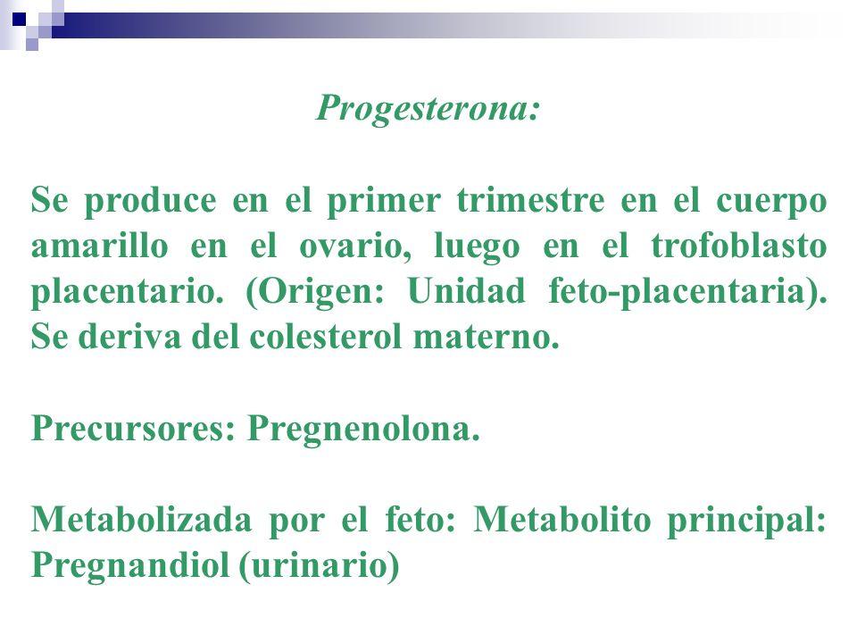 Progesterona: Se produce en el primer trimestre en el cuerpo amarillo en el ovario, luego en el trofoblasto placentario. (Origen: Unidad feto-placenta