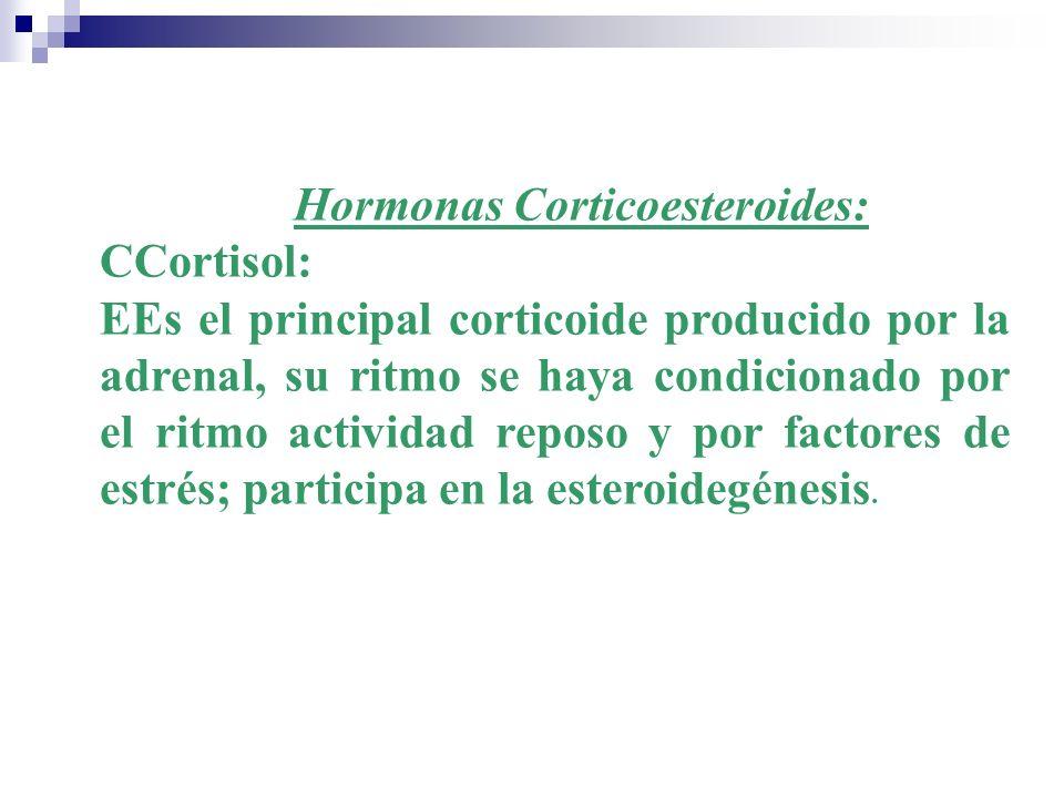 Hormonas Corticoesteroides: CCortisol: EEs el principal corticoide producido por la adrenal, su ritmo se haya condicionado por el ritmo actividad repo