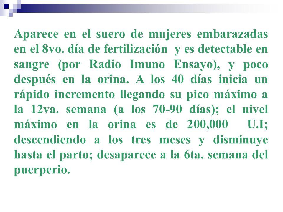 Aparece en el suero de mujeres embarazadas en el 8vo. día de fertilización y es detectable en sangre (por Radio Imuno Ensayo), y poco después en la or