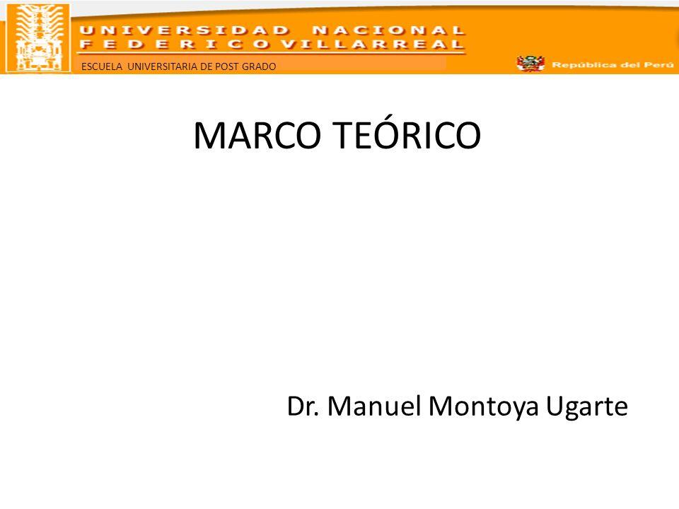 ESCUELA UNIVERSITARIA DE POST GRADO MARCO TEÓRICO Dr. Manuel Montoya Ugarte