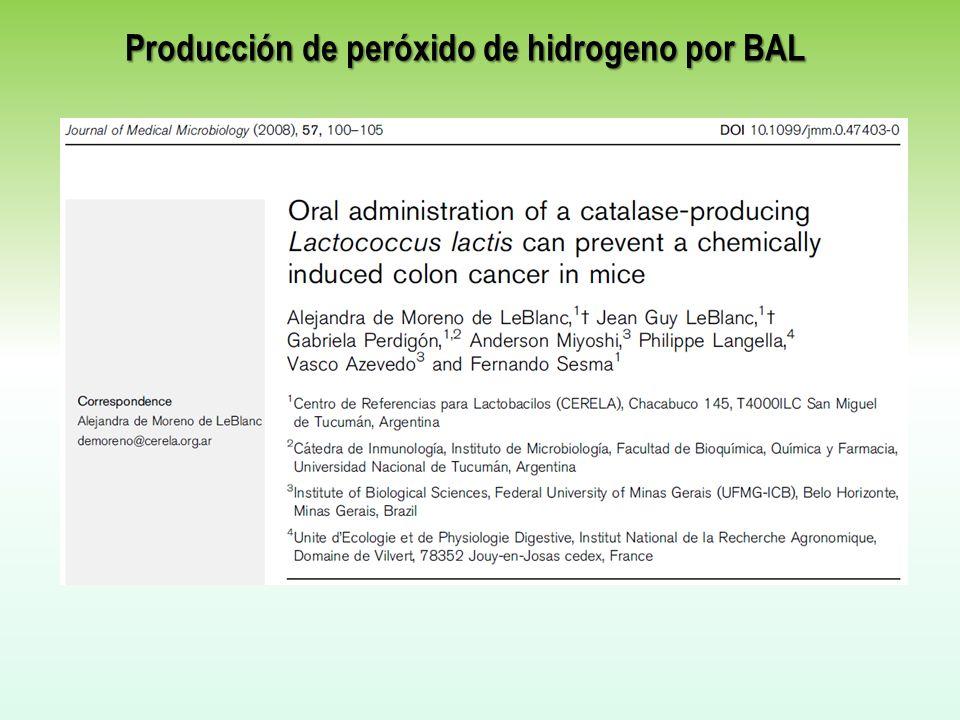 Producción de peróxido de hidrogeno por BAL