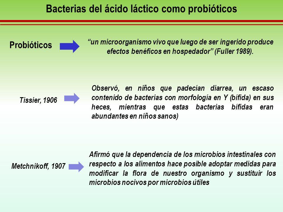 Bacterias del ácido láctico como probióticos Efectos benéficos de los microorganismos probióticos en el tractogastroinestinal de mamíferos.