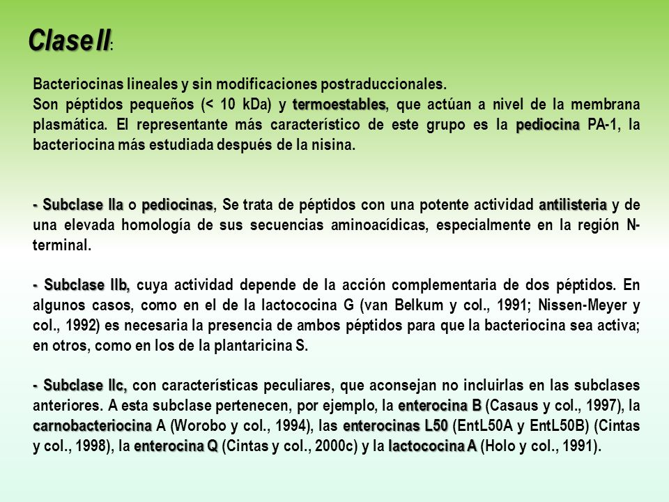 Bacteriocinas lineales y sin modificaciones postraduccionales.