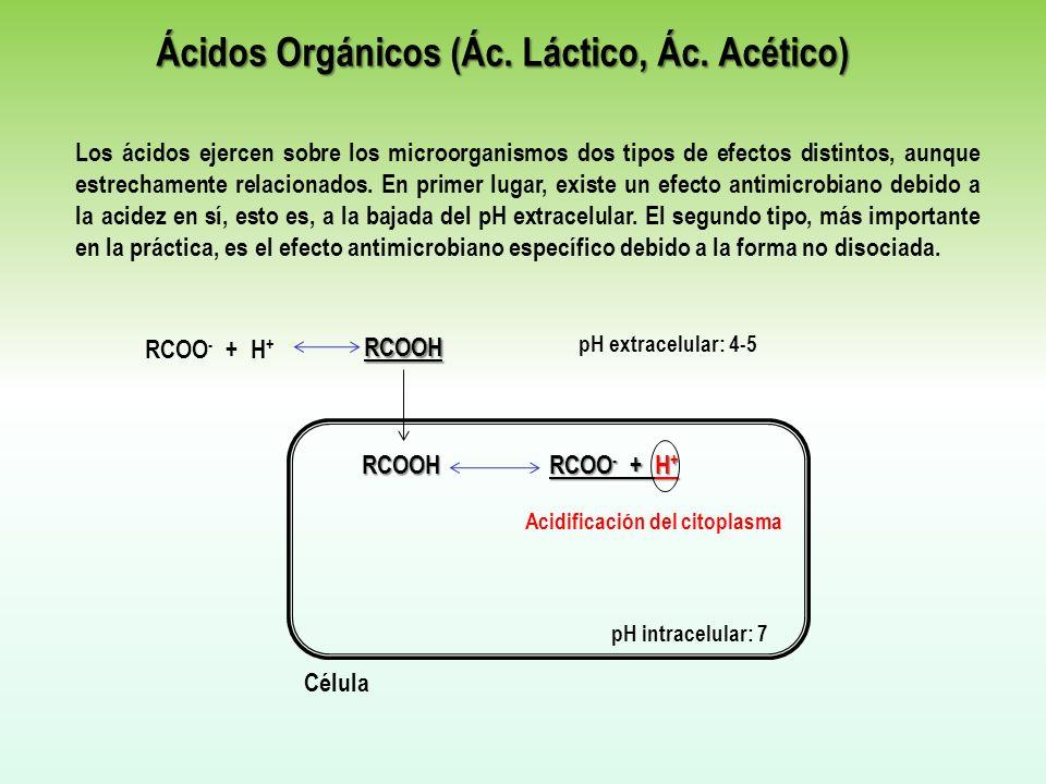 Ácidos Orgánicos (Ác. Láctico, Ác. Acético) Los ácidos ejercen sobre los microorganismos dos tipos de efectos distintos, aunque estrechamente relacion