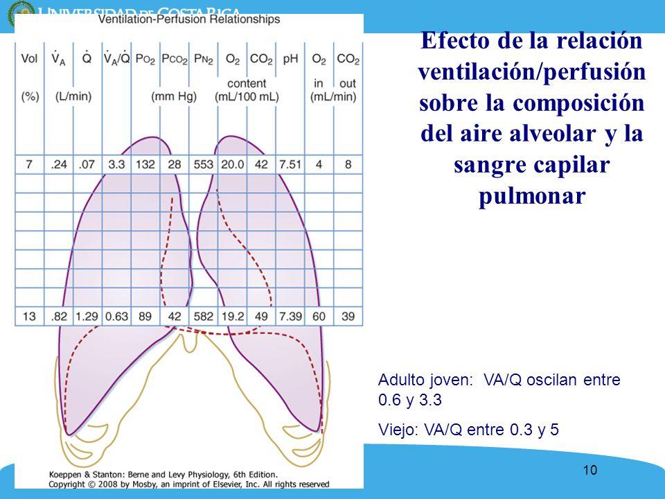 10 Efecto de la relación ventilación/perfusión sobre la composición del aire alveolar y la sangre capilar pulmonar Adulto joven: VA/Q oscilan entre 0.
