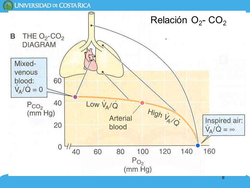 9 Efecto de la relación ventilación/perfusión sobre la composición del aire alveolar y la sangre capilar pulmonar Adulto joven: VA/Q oscilan entre 0.6 y 3.3 Viejo: VA/Q entre 0.3 y 5