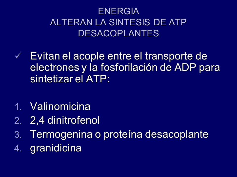 ENERGIA ALTERAN LA SINTESIS DE ATP DESACOPLANTES Evitan el acople entre el transporte de electrones y la fosforilación de ADP para sintetizar el ATP: