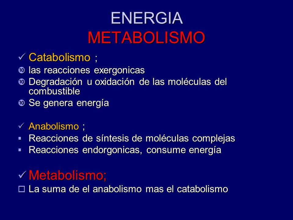 ENERGIA METABOLISMO Catabolismo ; Catabolismo ; las reacciones exergonicas las reacciones exergonicas Degradación u oxidación de las moléculas del com