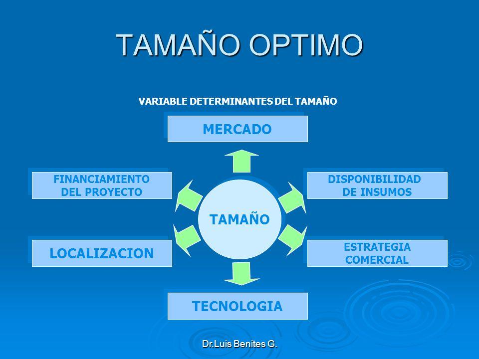 TAMAÑO OPTIMO TAMAÑO TECNOLOGIA MERCADO VARIABLE DETERMINANTES DEL TAMAÑO DISPONIBILIDAD DE INSUMOS DISPONIBILIDAD DE INSUMOS FINANCIAMIENTO DEL PROYE