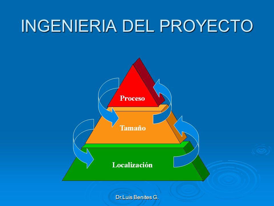 INGENIERIA DEL PROYECTO Dr.Luis Benites G.
