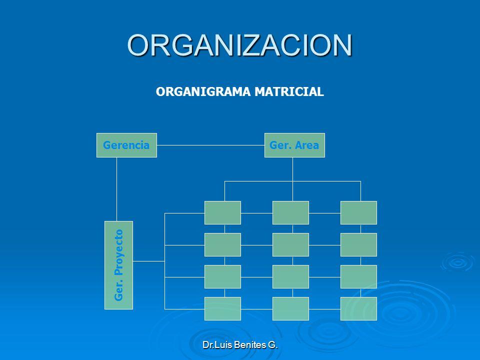 Gerencia Ger. Proyecto Ger. Area ORGANIZACION ORGANIGRAMA MATRICIAL Dr.Luis Benites G.