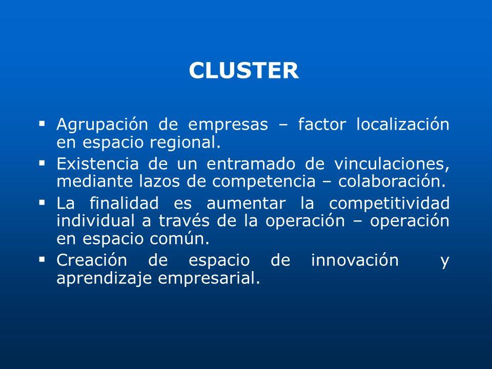 CLUSTER Agrupación de empresas – factor localización en espacio regional. Existencia de un entramado de vinculaciones, mediante lazos de competencia –