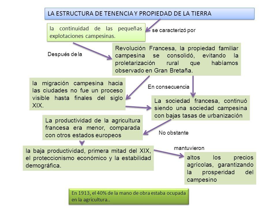 la baja productividad, primera mitad del XIX, el proteccionismo económico y la estabilidad demográfica. LA ESTRUCTURA DE TENENCIA Y PROPIEDAD DE LA TI