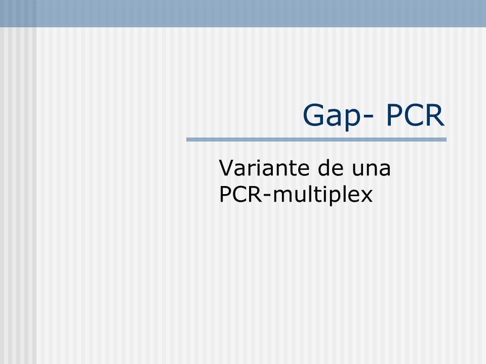 Gap- PCR Variante de una PCR-multiplex