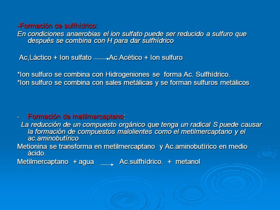-Formación de sulfhídrico: En condiciones anaerobias el ion sulfato puede ser reducido a sulfuro que después se combina con H para dar sulfhídrico Ac,