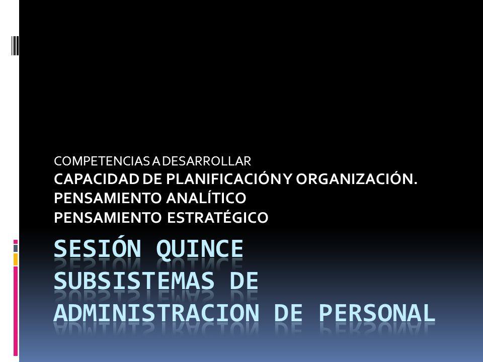 COMPETENCIAS A DESARROLLAR CAPACIDAD DE PLANIFICACIÓN Y ORGANIZACIÓN. PENSAMIENTO ANALÍTICO PENSAMIENTO ESTRATÉGICO