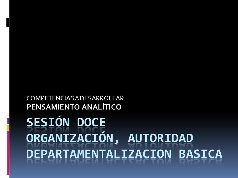 COMPETENCIAS A DESARROLLAR PENSAMIENTO ANALÍTICO