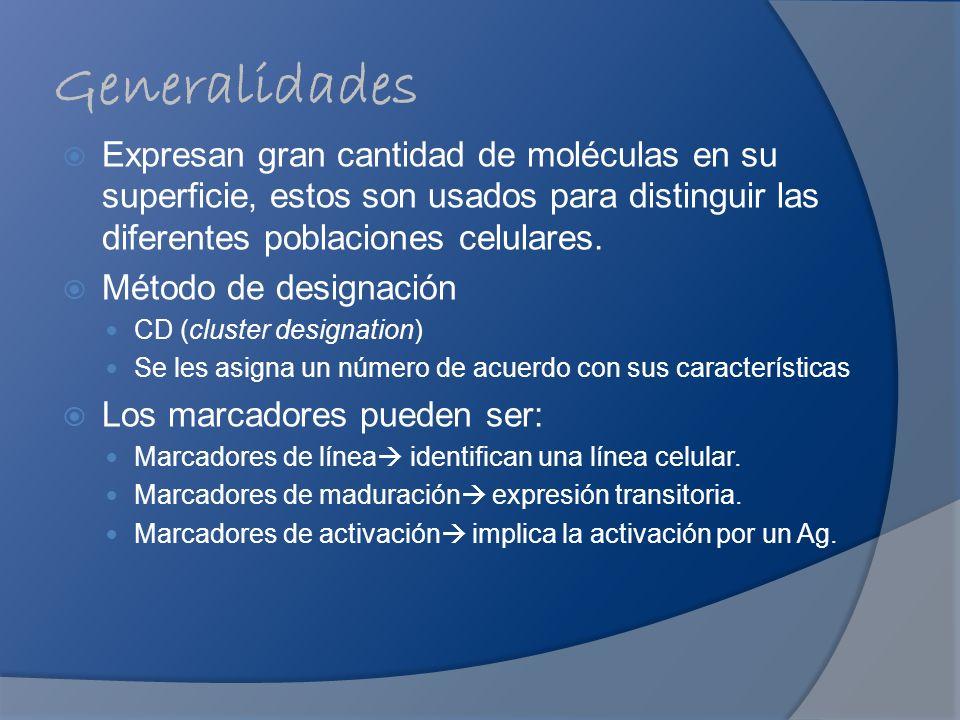Generalidades Expresan gran cantidad de moléculas en su superficie, estos son usados para distinguir las diferentes poblaciones celulares. Método de d
