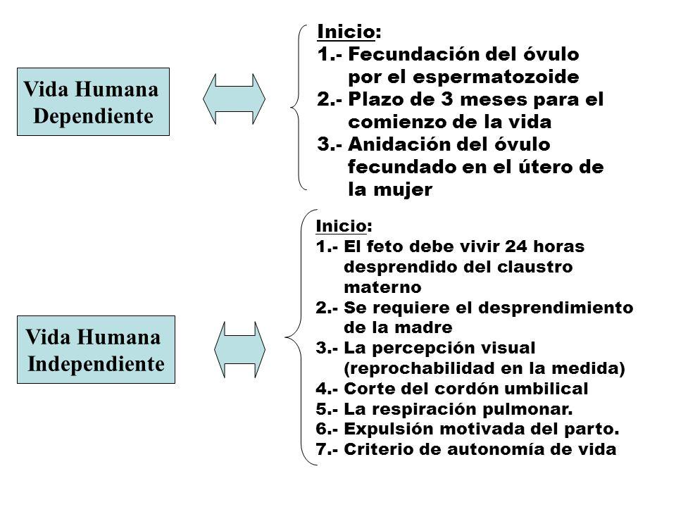 Vida Humana Dependiente Vida Humana Independiente Inicio: 1.- Fecundación del óvulo por el espermatozoide 2.- Plazo de 3 meses para el comienzo de la
