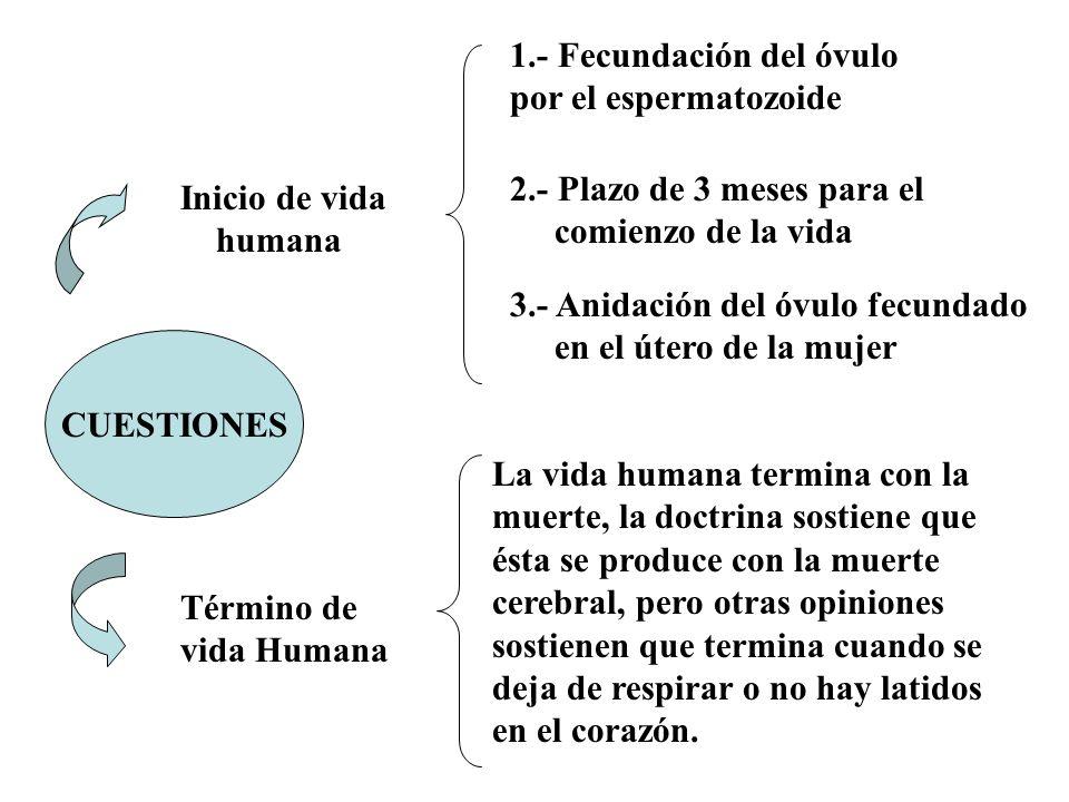 LESIONES AL FETO ART.124 A C.P.