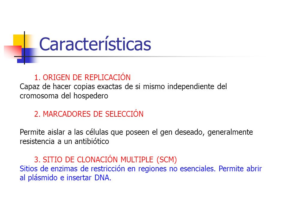 Características 1. ORIGEN DE REPLICACIÓN Capaz de hacer copias exactas de si mismo independiente del cromosoma del hospedero 2. MARCADORES DE SELECCIÓ