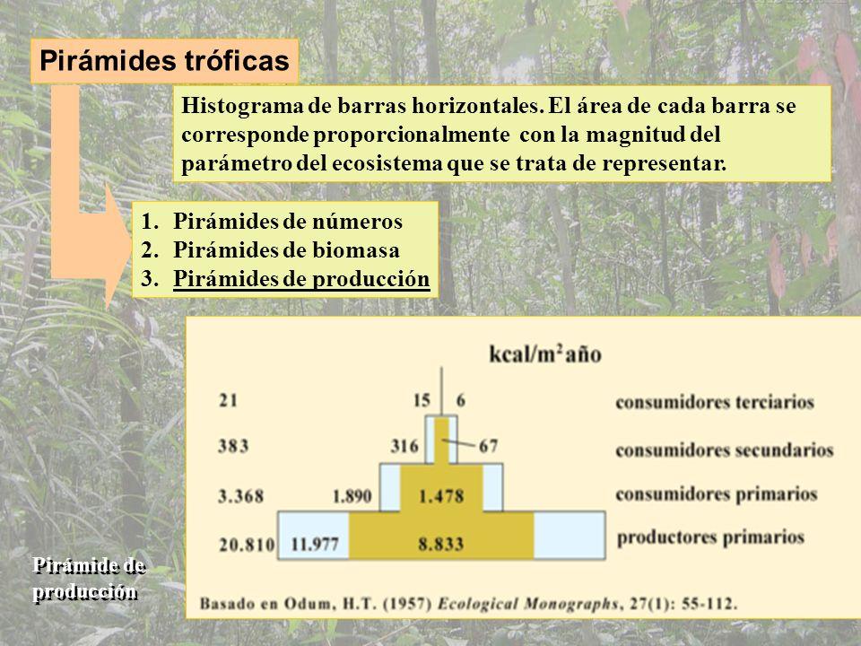 La regulación del ecosistema Estrategas de la k y estrategas de la r dN/dt = r N Tasa de crecimiento Potencial reproductivo Efectivo de la población Medio ideal Crecimiento de una población