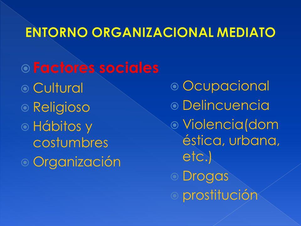 Factores sociales Cultural Religioso Hábitos y costumbres Organización Ocupacional Delincuencia Violencia(dom éstica, urbana, etc.) Drogas prostitució