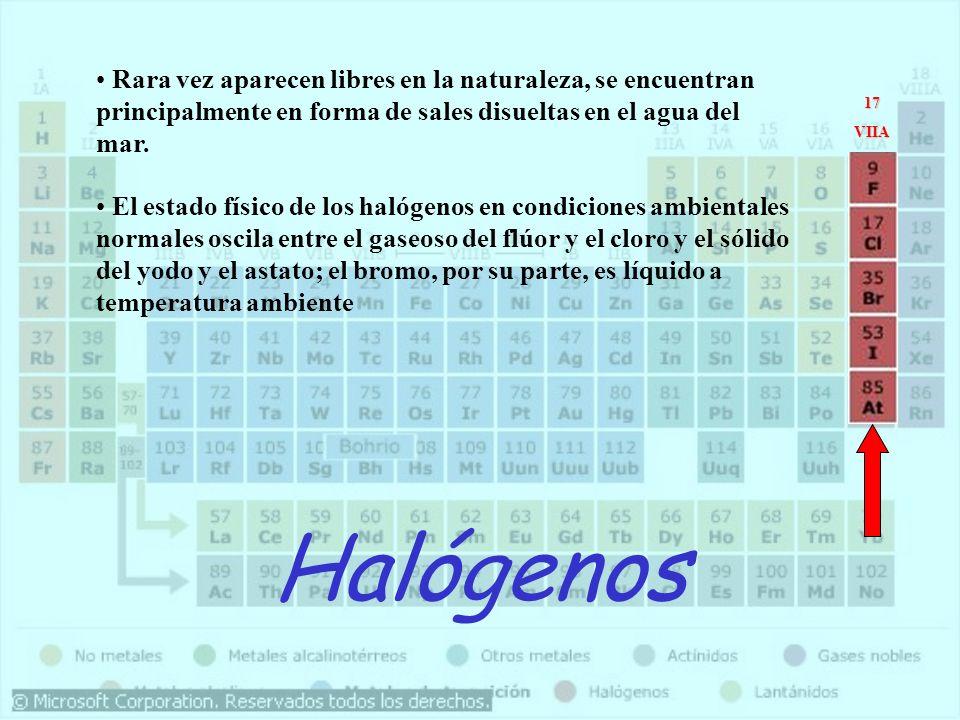 Halógenos Rara vez aparecen libres en la naturaleza, se encuentran principalmente en forma de sales disueltas en el agua del mar. El estado físico de