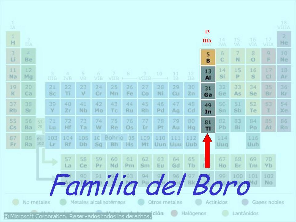 Familia del Boro 13IIIA