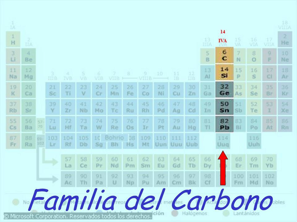 Familia del Carbono 14IVA