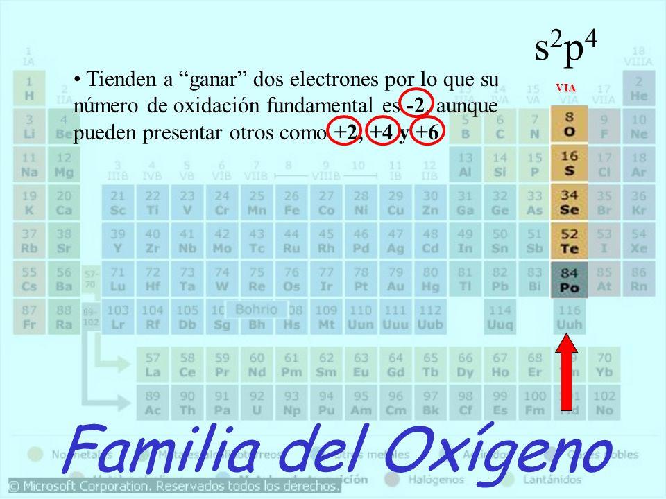 Familia del Oxígeno VIA Tienden a ganar dos electrones por lo que su número de oxidación fundamental es -2, aunque pueden presentar otros como +2, +4
