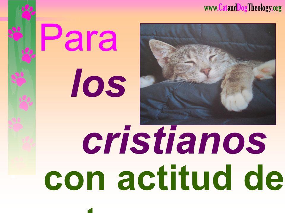 www.CatandDogTheology.org El deseo <