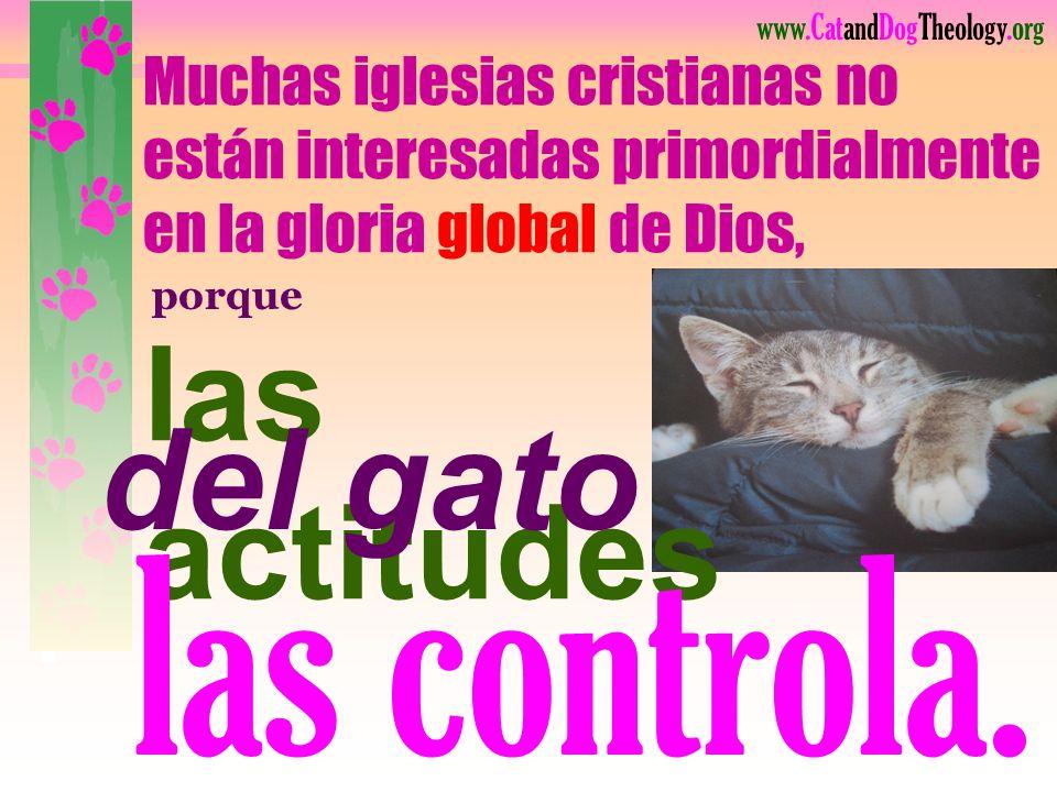 www.CatandDogTheology.org ¿Será que Dios quiere sanar a estas personas? ¡Si eso le da mayor gloria, sí! Pero si recibe más gloria llevándoselos a casa