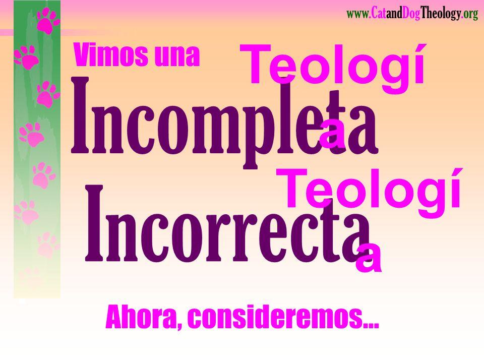 Teología del gato (Actitud) Teología del perro (Actitud) Teología del gato (Actitud) INCORRECTOCORRECTO